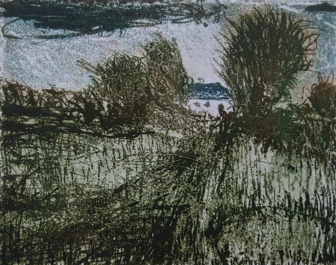 Monasterevin Environs 2, aquatint, 16.2 x 24 cm, edition of 55