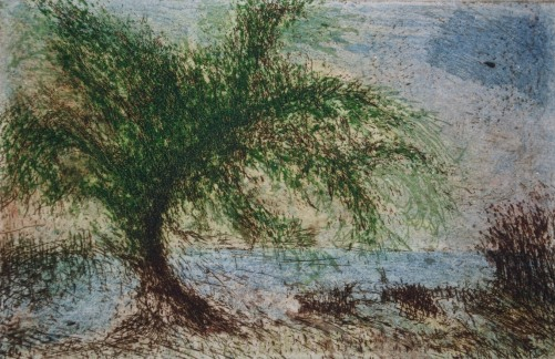 Tree Shaped by Storms, etching and aquatint, 7 x 11 cm, edition of 55
