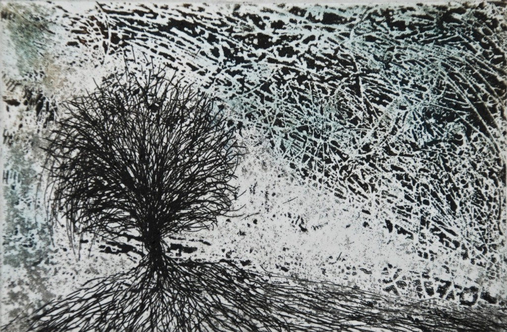 Rooted Tree, etching and aquatint, 8 x 11.5 cm, v:p, edition of 55
