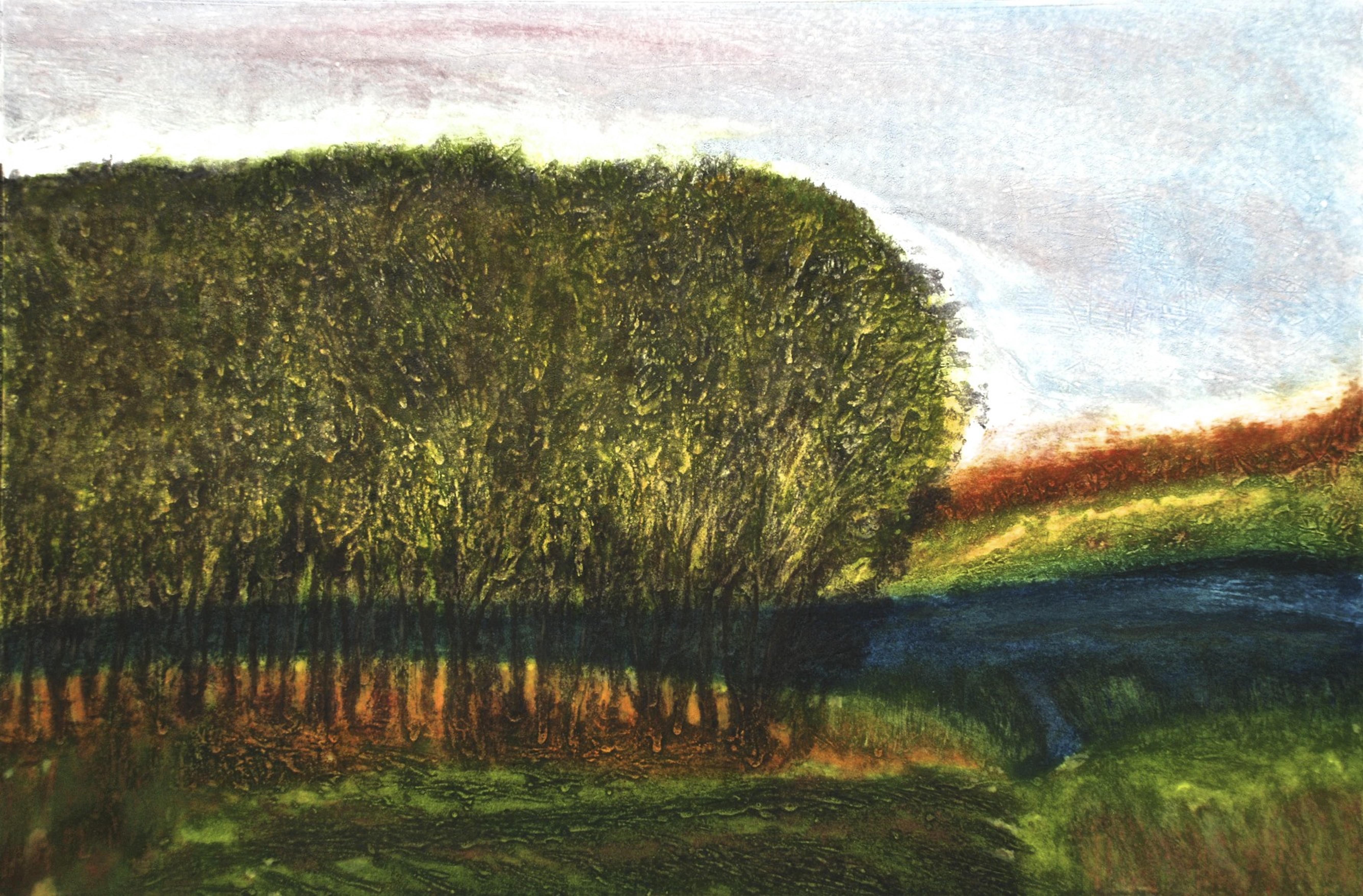 Where the Forest Ends, carborundum, 42 x 63 cm, 1:5, v/p